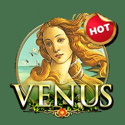 venus โปรโมชั่นสล็อต