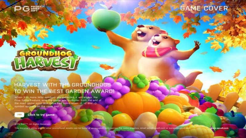 Groundhog Harvest-pgslot